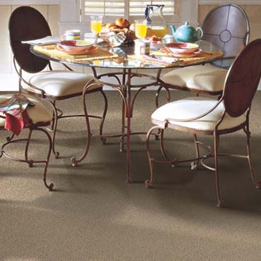 Horizon Carpet | Herndon, VA
